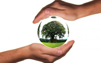 Strange Bedfellows – COVID-19 and Environmental Sustainability